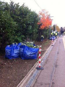 Kew Gardens station planting prep 013